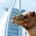 Dubai_Travel_Tips
